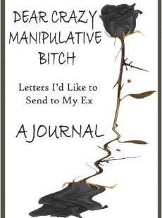 Dear Crazy Manipulative Bitch: A Journal